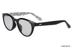 BASIC SUNGLASSES ZA61G02_D-1